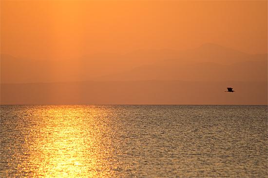 東琵琶湖3-9