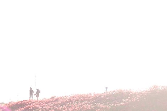 矢勝川-6