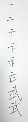 2013011319100704b.jpg