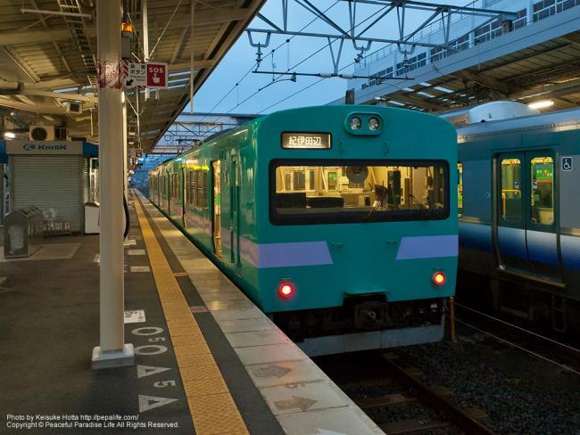 紀勢本線(きのくに線)の電車(113系2両編成の2000番台)