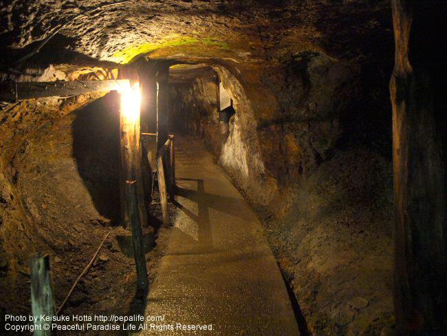 琥珀博物館の琥珀採掘坑道
