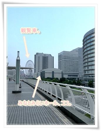 観光&クラシック(オケ)演奏会鑑賞♪に最適なコンサートホールはココだっ!!*\(>∀<)/*その2です。