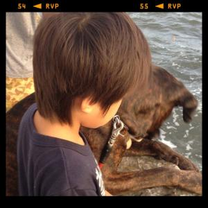 IMG_3901_convert_20120815222355.jpg