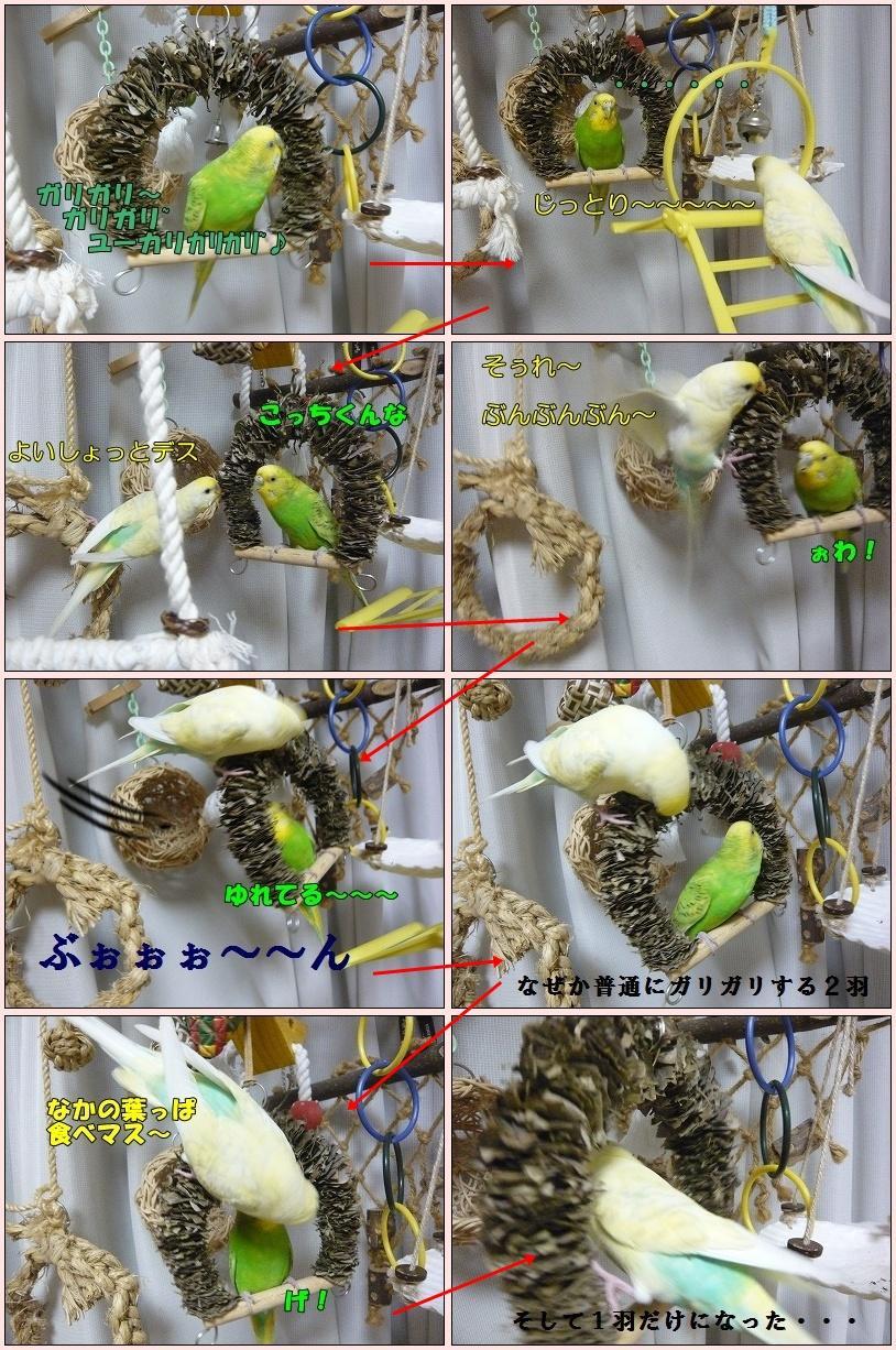 s-P1100437-tile_convert_20121027232718.jpg