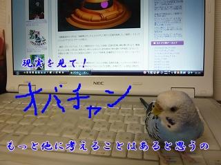 s-P1110190.jpg