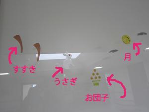 otukimi_gel6.jpg