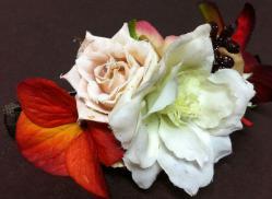 flower 20120503